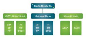 Quản trị dự án SAP ERP và kinh nghiệm triển khai ERP